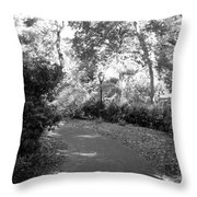 Lamps Of Central Park Throw Pillow