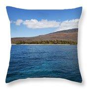 Lanai Coastline Throw Pillow