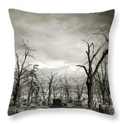 Land Of The Lost Spirits Throw Pillow