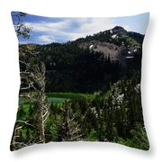 Landscape - Carson Pass 1 Throw Pillow