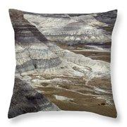 Landscape Petrified Forest Throw Pillow