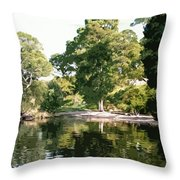 Landscape Tree Reflections Throw Pillow