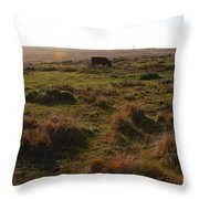 Landscape With Cow Grazing In The Field . 7d9935 Throw Pillow