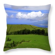 Landscape With Crater Throw Pillow