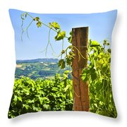 Landscape With Vineyard Throw Pillow by Elena Elisseeva