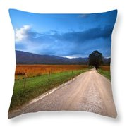 Lane Across Valley Throw Pillow