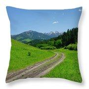 Lane View Of Crazy Mountains Throw Pillow