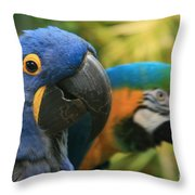 Language Of The Soul Throw Pillow