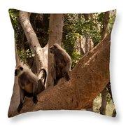 Langurs Sariska Throw Pillow