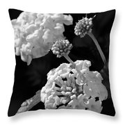 Lantana In Black And White Throw Pillow