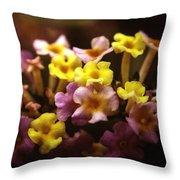 Lantana Throw Pillow by Kelly Rader
