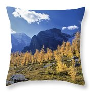 Larch Trees From The Saddleback Trail Throw Pillow