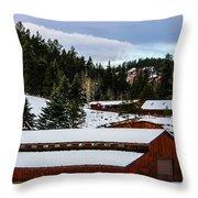 Large Barn Throw Pillow
