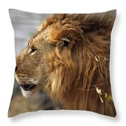 Large Male Lion Emerging From The Bush Throw Pillow