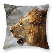Large Male Lion Profile Portrait Throw Pillow