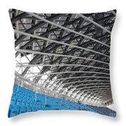 Large Stadium Throw Pillow