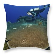 Large Staghorn Coral And Scuba Diver Throw Pillow