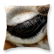 Lashes On The Eye Throw Pillow