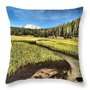 Lassen Meadows Throw Pillow