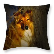 Lassie Lookalike Throw Pillow