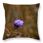 Last Aster Throw Pillow