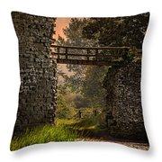 Last Bridge To Minas Tirith  Throw Pillow