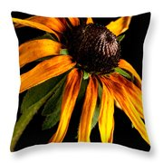 Last Day Of A Black-eyed Susan Throw Pillow