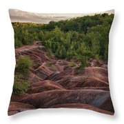 Last Look At The Badlands Throw Pillow