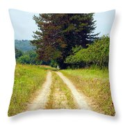 Last Of The Great Trees Throw Pillow