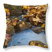 Last Signs Of Autumn 0438 Throw Pillow