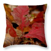 Last Stand Of Red  Throw Pillow