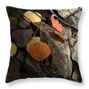 Last Vestige Of Fall Throw Pillow