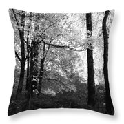 Lasting Leaves Throw Pillow