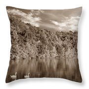 Late Afternoon At The Lake - S Throw Pillow