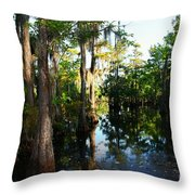 Late Afternoon At The Swamp Throw Pillow