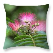 Late May Color Throw Pillow