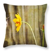 Late Summer Delight Throw Pillow