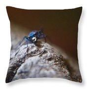 Laughing Cincindellidae Throw Pillow