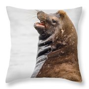 Laughing Sea Lion Throw Pillow