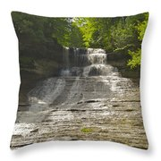 Laughing Whitefish 4608 Throw Pillow