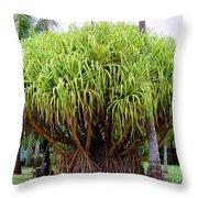 Lauhala Tree Throw Pillow