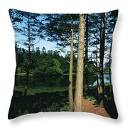 Lauragh, Co Kerry, Ireland Trees In A Throw Pillow