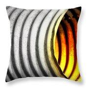 Lava Tube Throw Pillow