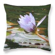Lavendar Aqua Queen Throw Pillow