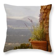 Lavender And Rock Throw Pillow