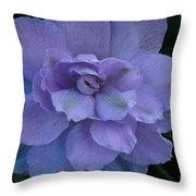 Lavender Blue Throw Pillow
