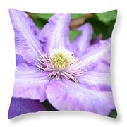 Lavender Clematis Flower Throw Pillow