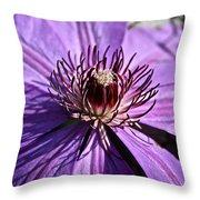 Lavender Clematis Throw Pillow