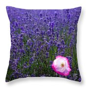 Lavender Field With Poppy Throw Pillow