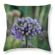 Lavender Flowering Onion Throw Pillow